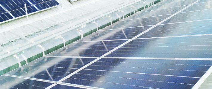 Solarpflicht in Rheinland Pfalz